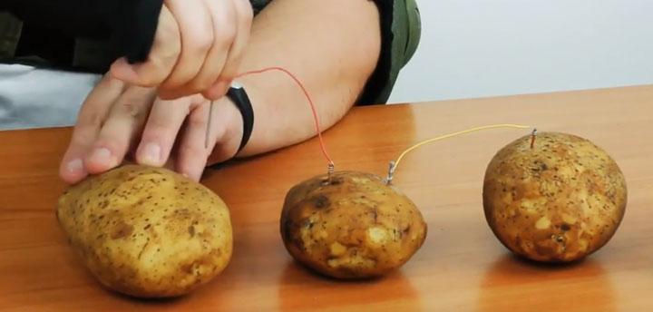 подключение картошек между собой для выработки электричества