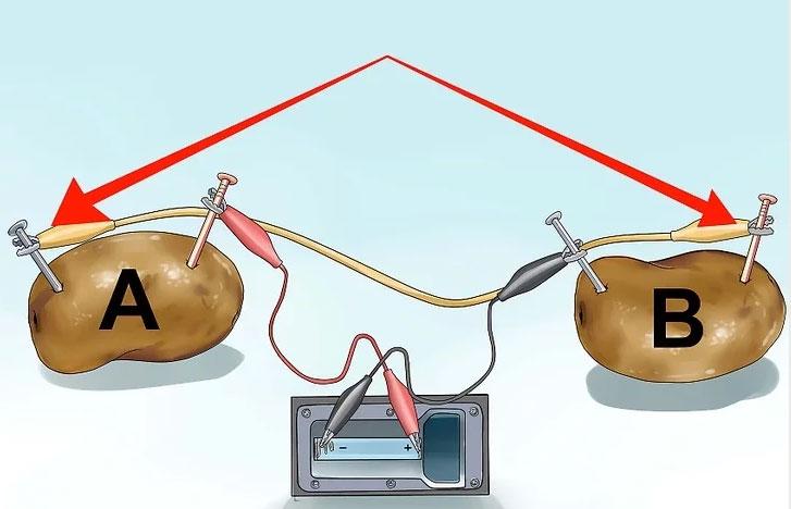 схема подключения картошки для выработки напряжения и питания электронных часов