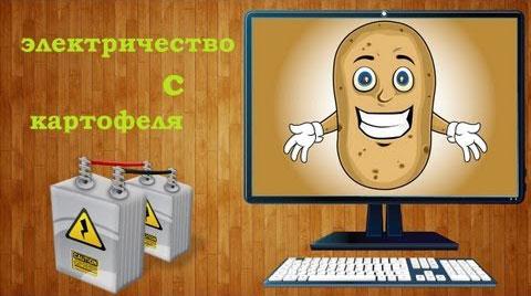 откуда в картошке электричество