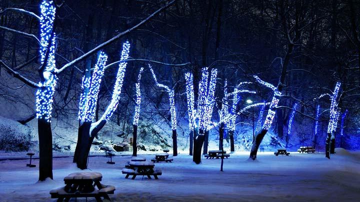 светодиодная гирлянда клиплайт для подсветки деревьев