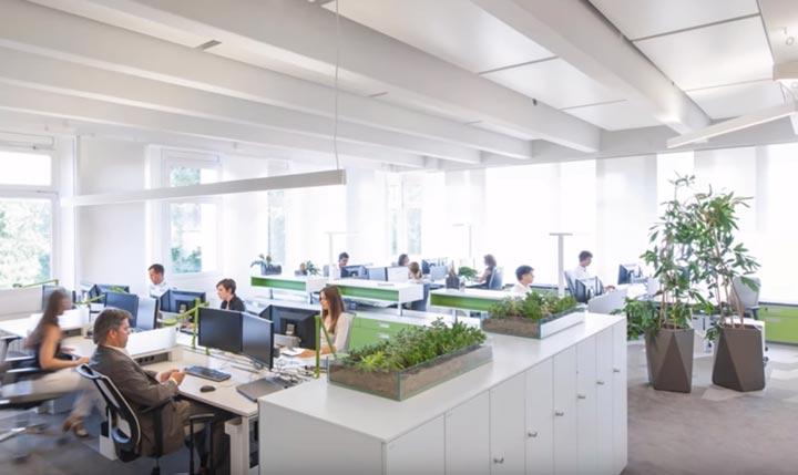 какой свет лучше для работы в офисе и почему