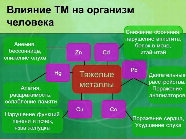влияние тяжелых металлов от батарейки на организм
