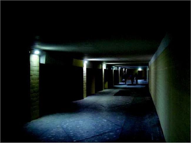светильники для подсветки путей эвакуации