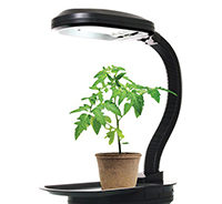 искусственное освещение для растений