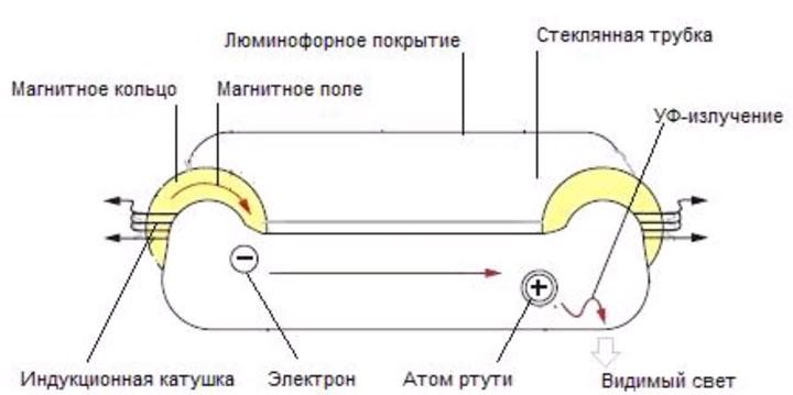 из чего состоит индукционная лампа устройство