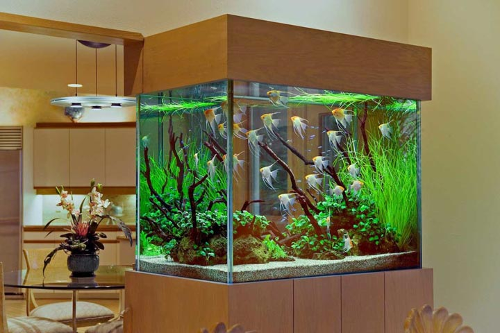подбор светильников в аквариум как правильно