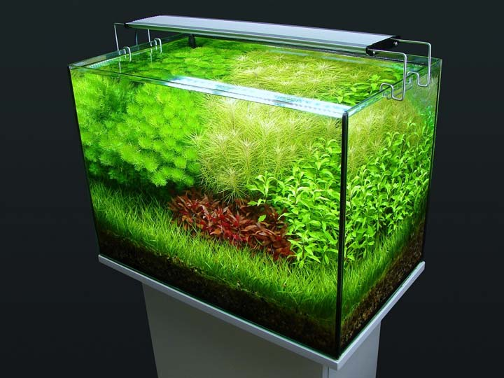 лампа освещения на стенках аквариума