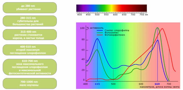 спектр индукционной фитолампы для растений и при каких цветах что лучше растет и развивается