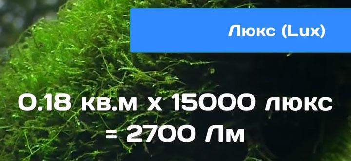 формула расчета освещенности аквариума и выбор светильников по люксам и люменам