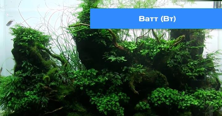 выбор светильников для аквариума по ваттам