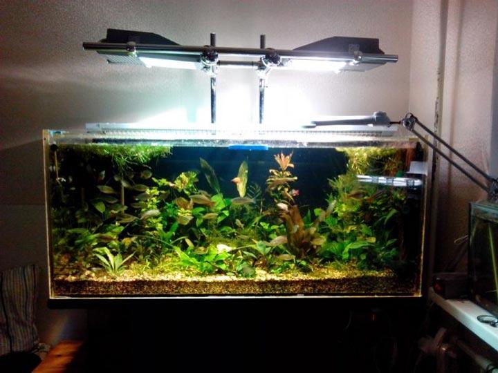 освещение аквариума металлогалогенными светильниками