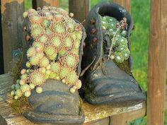 увеличение бактерий после сушки обуви