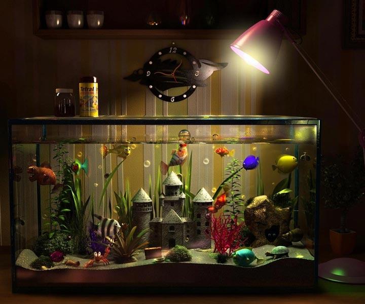 оптимальное время освещения для аквариума