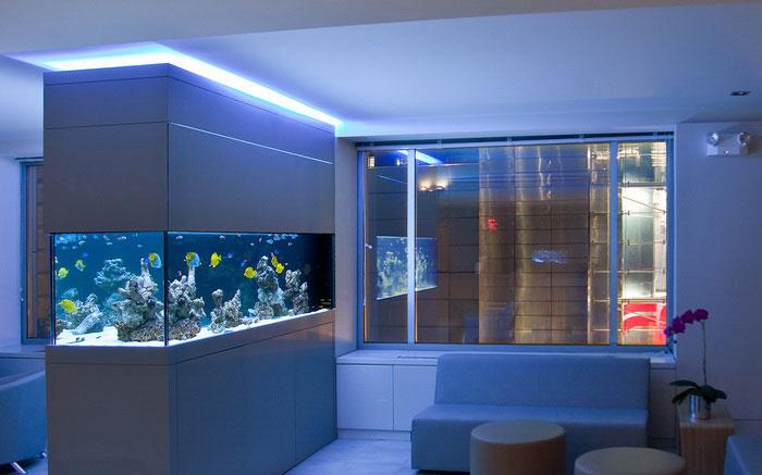 где лучше всего расположить аквариум в комнате квартиры