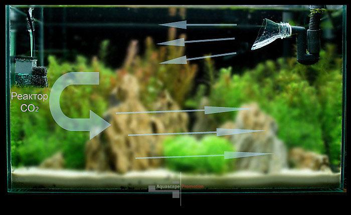 содержание со2 в аквариуме