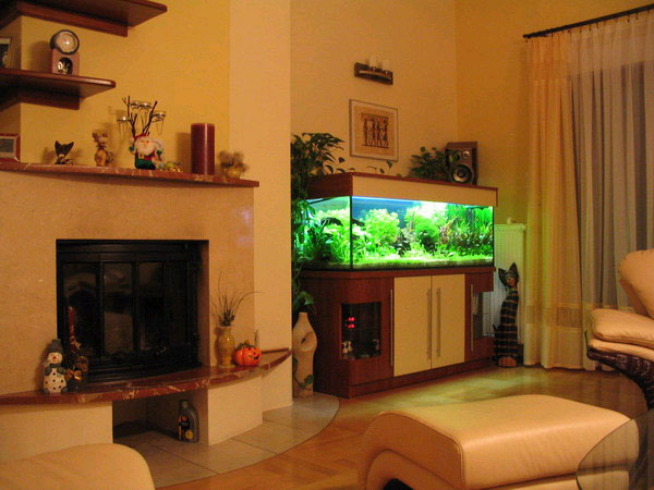 аквариум в интерьере комнаты вечером