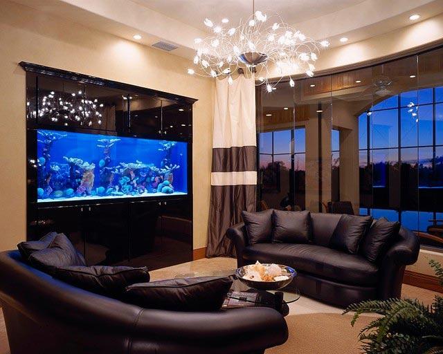 где лучше всего размещать аквариум дома