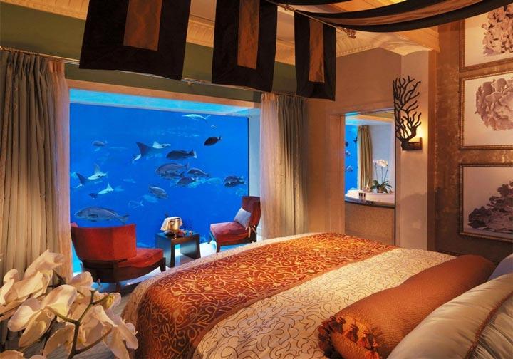 красивый аквариум для рыбок в спальне сколько света нужно