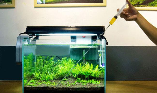 как удобрения влияют на продолжительность светового дня растений в аквариуме травнике