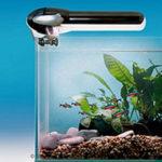Сколько времени освещать аквариум — правила расчета продолжительности освещения и светового дня.