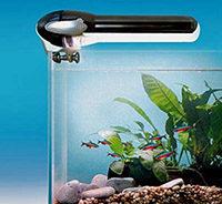 как выбрать время освещения аквариума