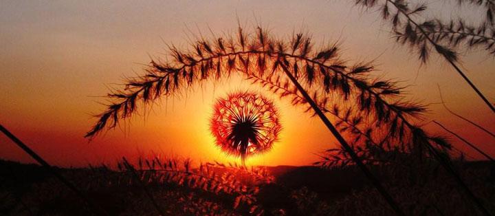 индекс цветопередачи и его сравнение с солнечным светом