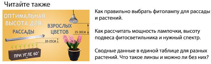 как выбрать фитолампу для рассады и растений мощность высота спектр