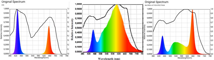 различие спектров в фитолампах