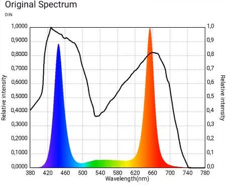 красный и синий свет в спектре фитоламп