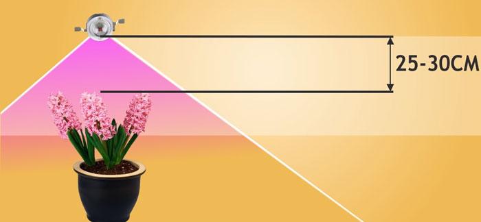 оптимальная высота подвеса фитосветильника