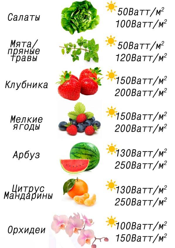 таблица расчетной мощности засветки фитоламп для разных растений