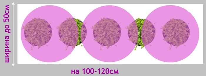 3 лампы по 15 вт для подсветки растений на подоконнике