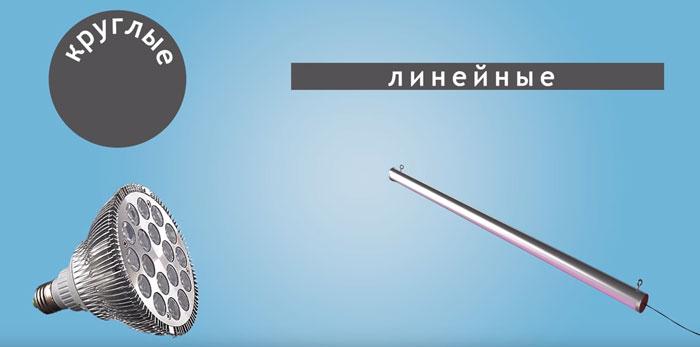 два типа фитоламп какие лучше