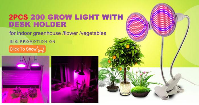 фитолампы для выращивания растений и рассады