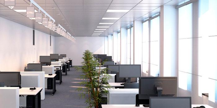 правильное освещение компьютеров в офисе