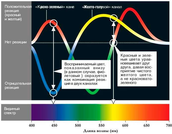 каких источников света следует избегать