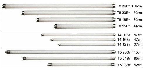виды люминесцентных трубок Т5, Т8
