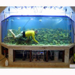 Как сделать крышку для освещения аквариума своими руками — 3 варианта.