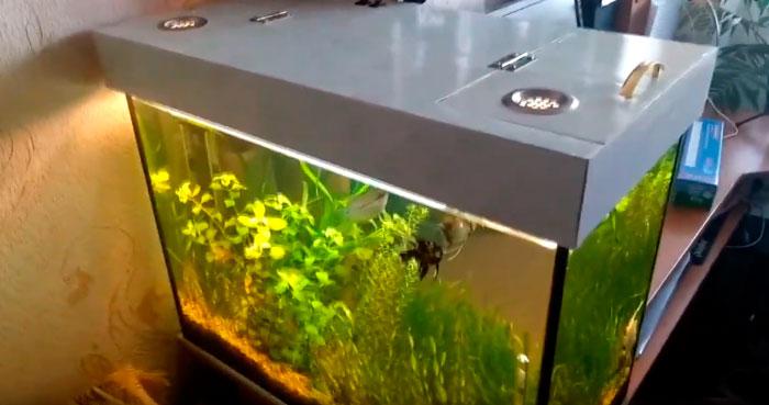 отверстие в крышке для обслуживания аквариума