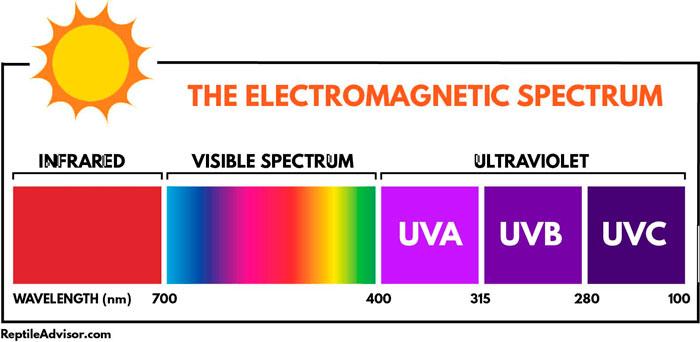 отличия лучей ультрафиолета uvb и uva