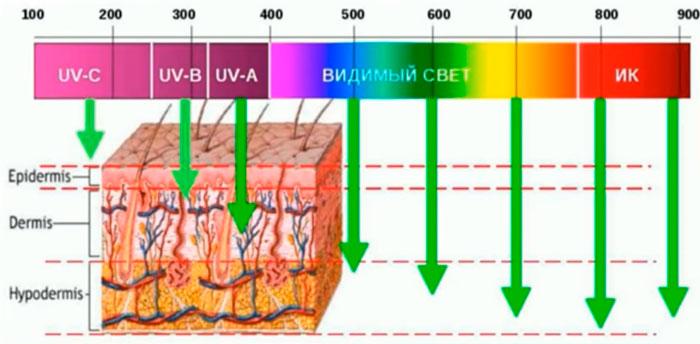 виды ультрафиолета и его проникновение под кожу