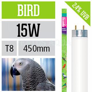Bird Lamp для птиц