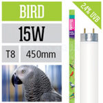5 правил освещения для птиц в домашних условиях.