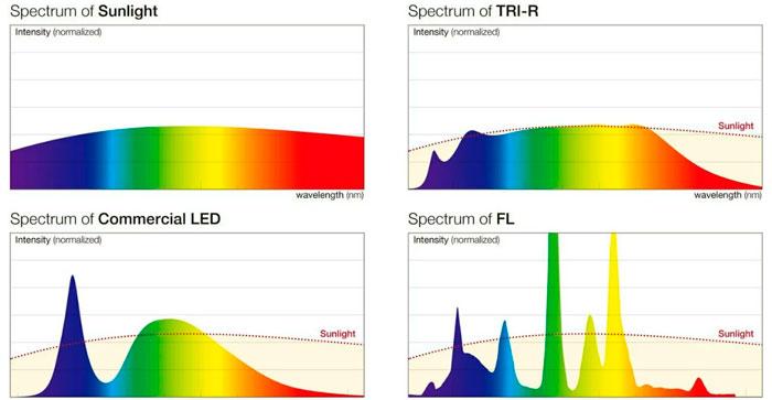 отличие света лампочек sunlike от простых светодиодных спектры