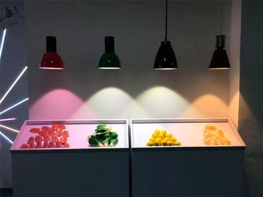 освещение продуктов разным цветом и светильниками