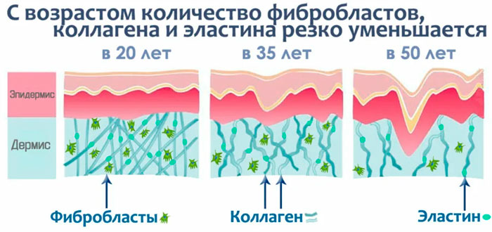 старение кожи и уменьшение коллагена